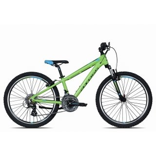 Axess Stipe 24 MTB 2017 | 30 cm | green black blue preview image