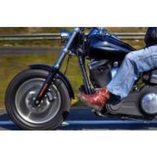 Harley Davidson Cruising preview image