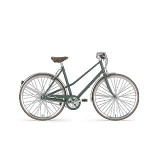 Gazelle Van Stael Damen grün 2019 59cm preview image