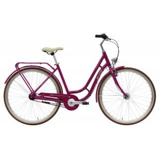 Pegasus Bici Italia 1949 7 Damen lila 2019 55cm preview image