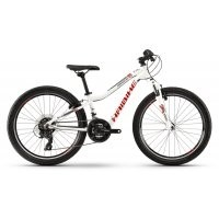 Haibike Seet HardFour Life 1.0 2020 preview image