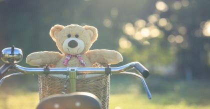 Bär im Fahrradkorb