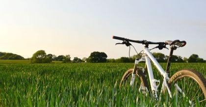 Mountainbike gebraucht