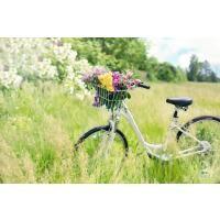 Fahrradkrügler